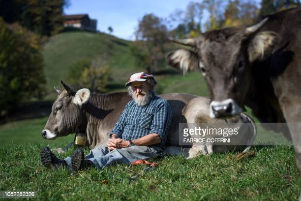 Swiss farmer Armin Capaul poses with one of his cows ahead of the nationwide vote on his initiative on cow horns on October 16 2018 near Perrefitte...