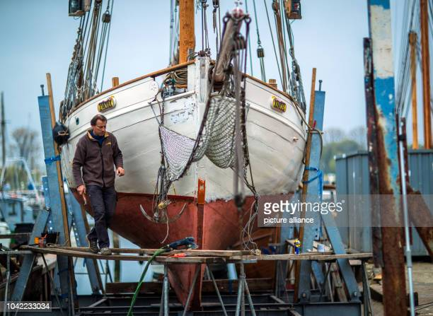 Swiss Gaspard Barraud from Montreux is woking on his salmon cutter Omi Alma from 1928 at the wharf on Poel IslandGermany 06 May 2017 The 89yearold...