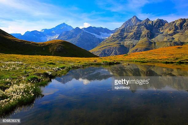 Swiss landscape: Alpine Lake reflection, cotton wildflowers meadows above Zermatt