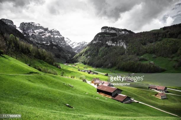 vila suíça no verão - lauterbrunnen - fotografias e filmes do acervo