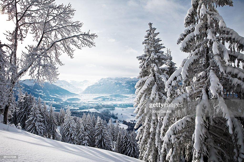 Swiss winter landscape  : Stock-Foto