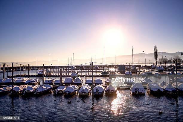Switzerland, Arbon, view to marina by sunset