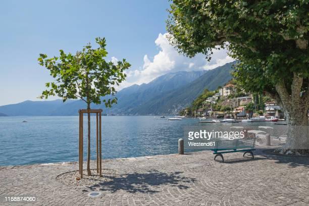 switzerland, ascona, lake maggiore, lakeshore - ascona stock pictures, royalty-free photos & images