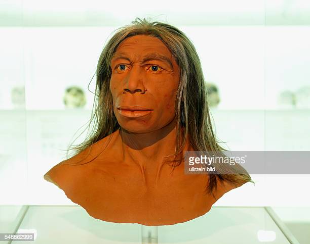 Switzerland Basel-Stadt Basel - Museum of Natural History, model of a Neanderthal -