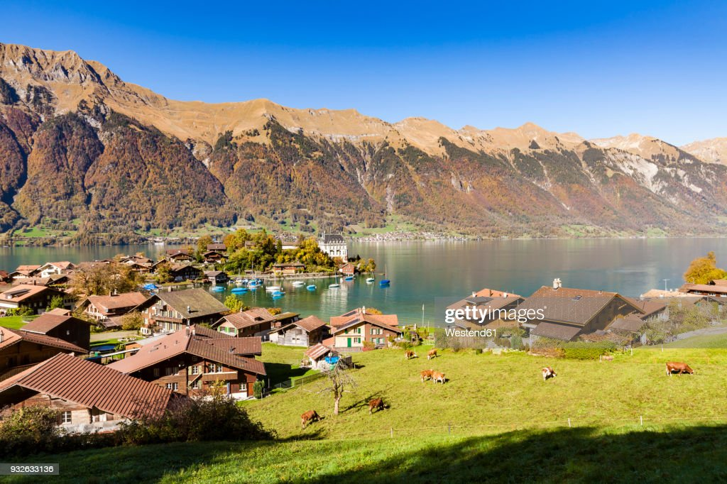 Switzerland Bern Bernese Oberland Iseltwald Lake Brienz