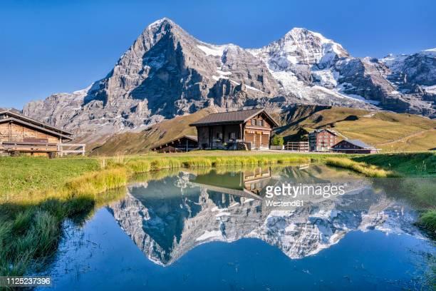 switzerland, bernese oberland, bernese alps, kleine scheidegg, eiger, moench and jungfrau - alpen stock-fotos und bilder