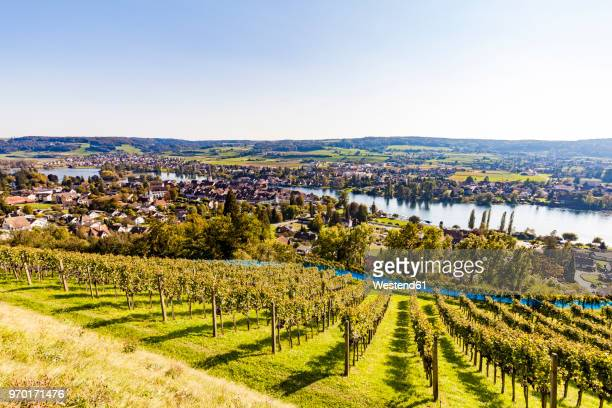 switzerland, canton of schaffhausen, stein am rhein, lake constance, rhine river, cityscape - rhine river stock pictures, royalty-free photos & images