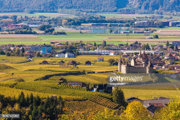 switzerland, canton vaud, aigle, vineyards and aigle castle - kanton waadt stock-fotos und bilder