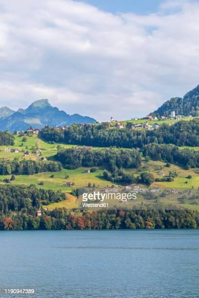 switzerland, gersau, schwyz, town on lakeshore of lake lucerne in summer - schwyz stock pictures, royalty-free photos & images