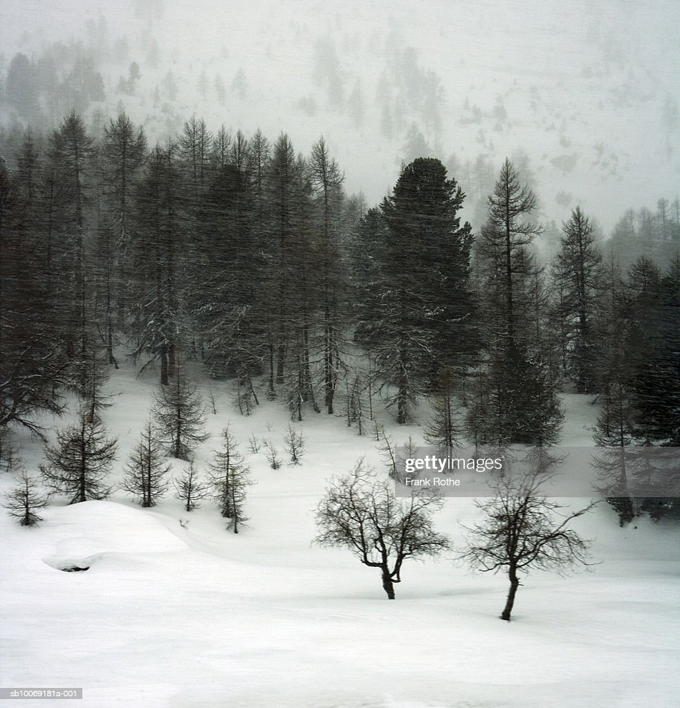 Switzerland, Snow covered landscape : Stockfoto