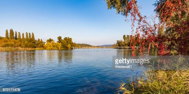 switzerland, thurgau, lake constance, rhine river, view to island werd, footbridge - rhine river stock pictures, royalty-free photos & images