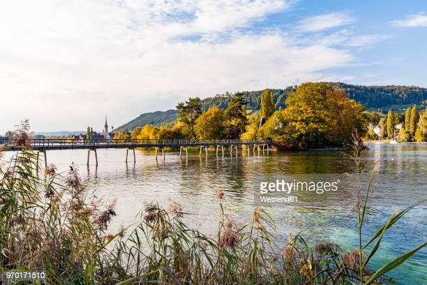 switzerland, thurgau, lake constance, rhine river, view to island werd, footbridge - lago constanza fotografías e imágenes de stock