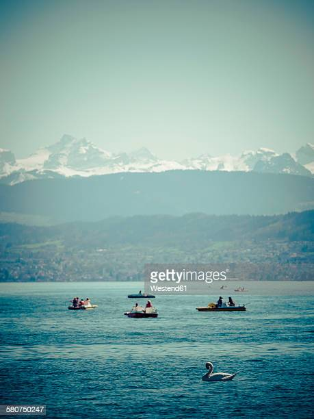 Switzerland, Zurich, Lake Zurich with boats and swan, Alps in the background