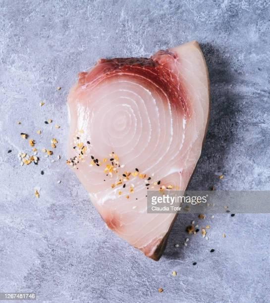 swordfish steak on gray background - poisson photos et images de collection