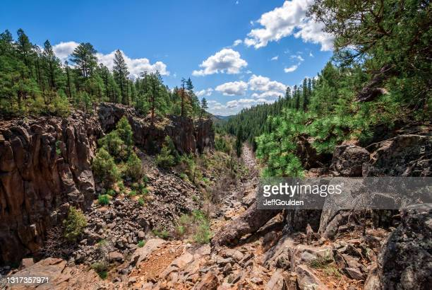 sycamore canyon - jeff goulden stock pictures, royalty-free photos & images