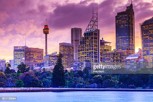 Sydney city and tv tower by night