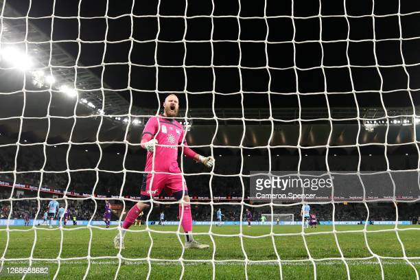 Sydney FC goakeeper Andrew Redmayne celebrates winning the A-League Semi Final match between Sydney FC and the Perth Glory at Bankwest Stadium on...