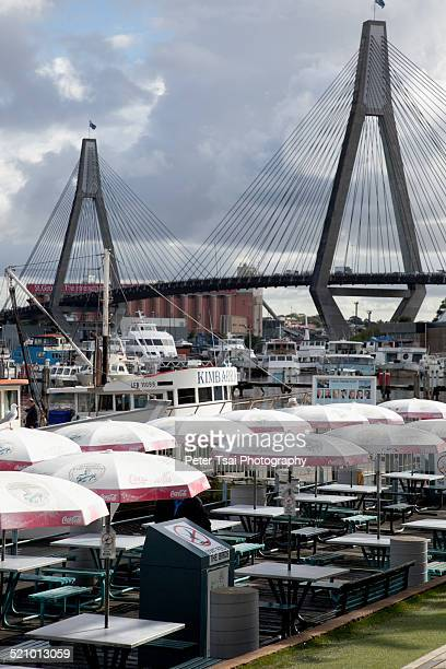 Sydney fish market picnic branches on the water fishing boats and the Anzac bridge in Sydney Australia
