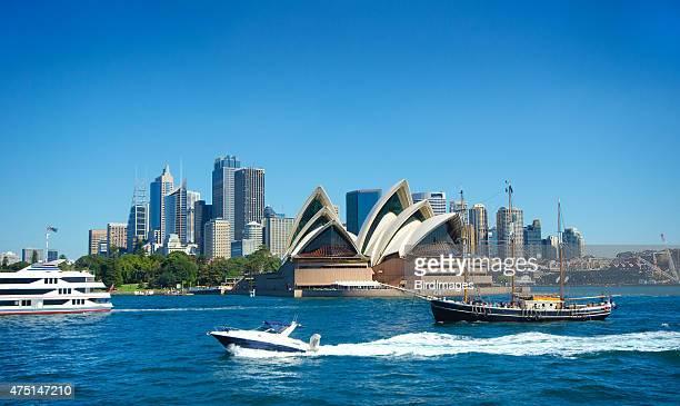 Sydney Harbour and Skyline