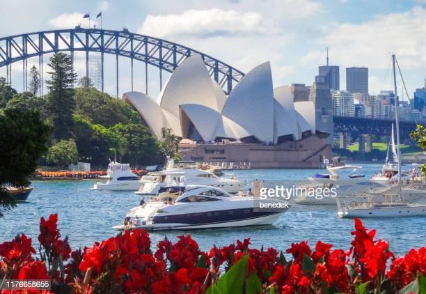sydney harbour australia - sydney harbor stock pictures, royalty-free photos & images