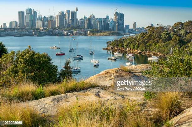 Sydney Harbour From Larkin Street