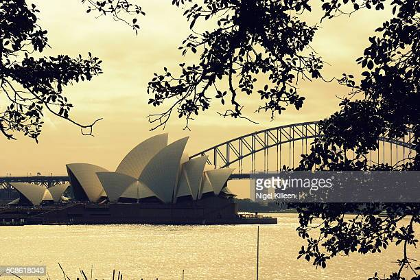 Sydney Opera House and Harbour Bridge at sunset Sydney Australia