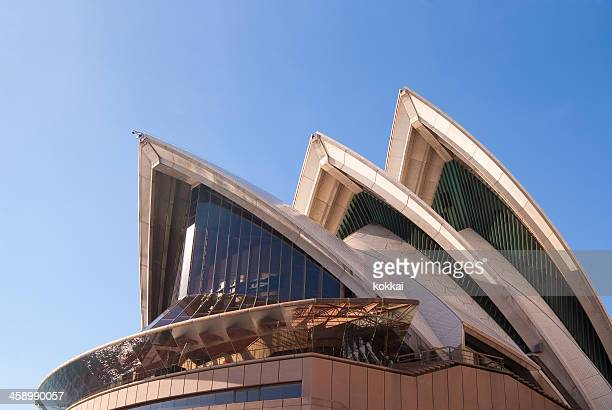 sydney opera house - performing arts center stock pictures, royalty-free photos & images