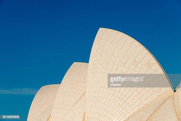 teto do sydney opera house - teatro de ópera - fotografias e filmes do acervo