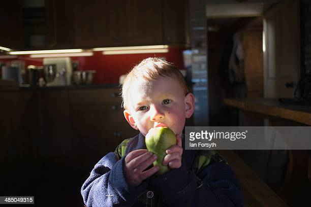 Sydney Owen eats a pair as he stands in the kitchen at Ravenseat the farm of his mother the Yorkshire Shepherdess Amanda Owen on April 15 2014 near...
