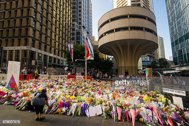 sydney siege: martin place memorial - terrorism stock pictures, royalty-free photos & images