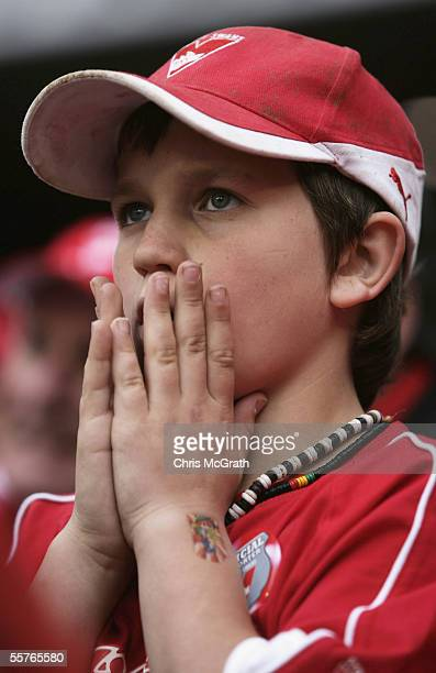Sydney Swans fans celebrate victory as the siren sounds during the 2005 AFL Grand Final between the Sydney Swans and the West Coast Eagles at the...