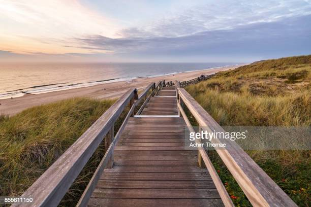 sylt island, germany, europe - elevated walkway stock pictures, royalty-free photos & images