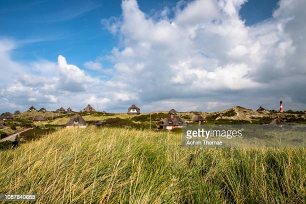 sylt island, north sea, northern friesland, schleswig-holstein, germany - schleswig holstein stock pictures, royalty-free photos & images