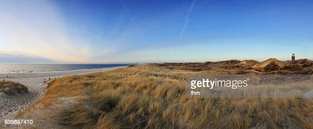 Sylt Landscape - dunes and lighthouse (Schleswig-Holstein/ Germany)