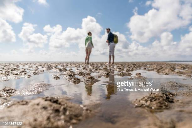 sylt, watt hike. germany - north sea stock pictures, royalty-free photos & images