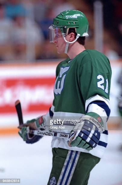 Sylvain Cote of the Hartford Whalers skates against the Toronto Maple Leafs during NHL game action on January 16 1989 at Maple Leaf Gardens in...