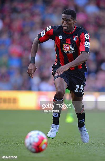 Sylvain Distin of AFC Bournemouth during the Barclays Premier League match between AFC Bournemouth and Sunderland at the Vitality Stadium on...