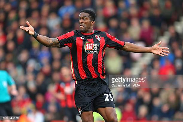 Sylvain Distin of Bournemouth appeals during the Barclays Premier League match between AFC Bournemouth and Newcastle United at Vitality Stadium on...