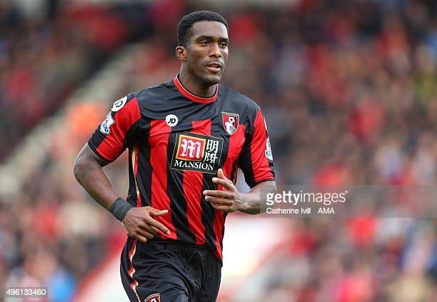 Sylvain Distin of Bournemouth during the Barclays Premier League match between AFC Bournemouth and Newcastle United at Vitality Stadium on November...