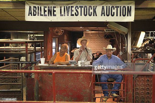 Sylvia Weaver John Addison and Randy Carson auction cattle at the Abilene Livestock Auction July 26 2011 in Abilene Texas A severe drought in the...