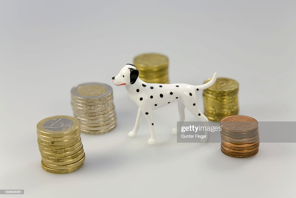 Symbol photo - Cost for domestic animals : Stock Photo