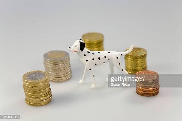 Symbol photo - Cost for domestic animals