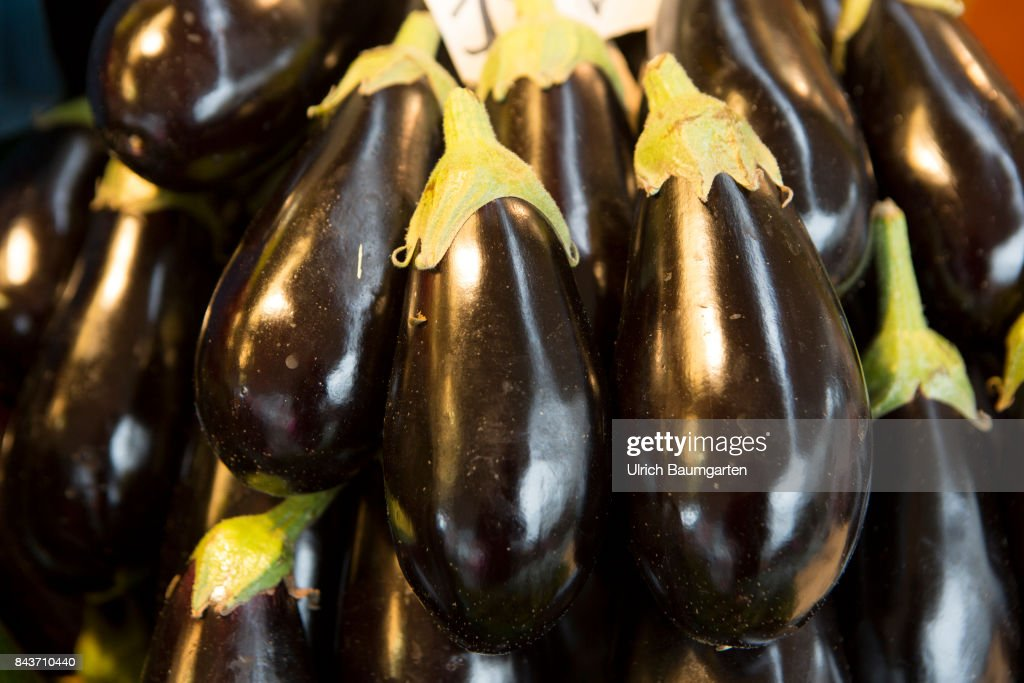 Symbol photo vegetables, nutrition, health, etc. - eggplants. : News Photo