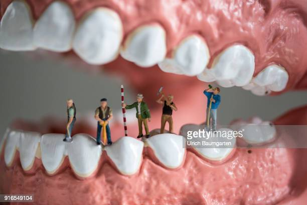 Symbol photo on the topics health dentistry dental medicine dental insurance tooth supplementary insurance health insurance etc The picture shows...
