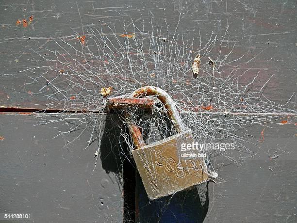 Symbol Schliessung geschlossen Vorhaengeschloss mit Spinnweben an einer Holztuer 2006
