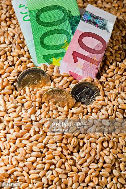 symbolic photo corn price wheat grains Euro coins and banknotes