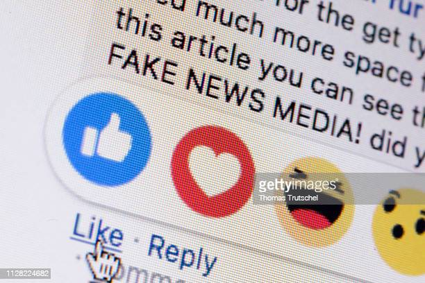 Symbolic photo on the topic of fake news in social media Next to the 'like me' button from facebook the words 'fake news media' are displayed on a...