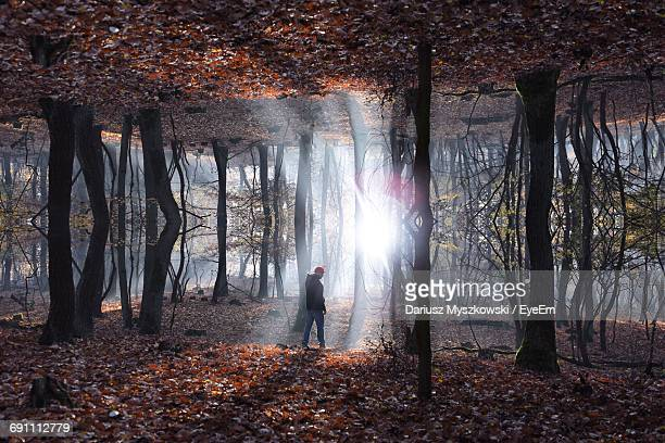 Symmetric Image Of Man Standing On Forest On Sunny Day