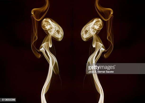 Symmetrical figures of smoke of brown color on a black bottom