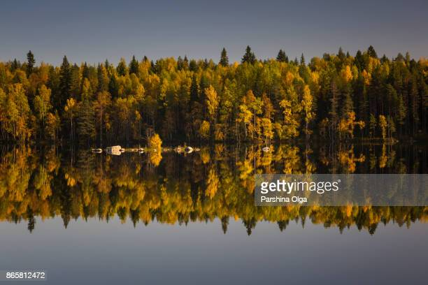 Symmetry of Autumn. Lake reflection. Karelia